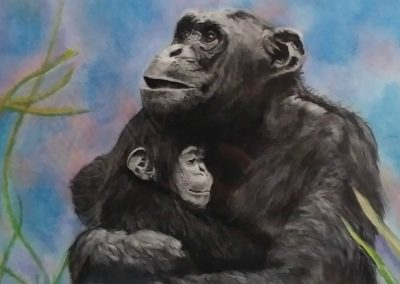 "<em>Chimps</em>, Charcoal and Pastel, 11"" x 14"""