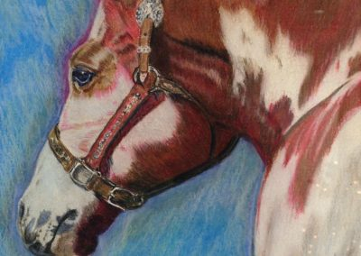 "<em>Horse</em>, colored pencil on watercolor paper, 8"" x 10"""