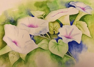 "<em>Morning Glories</em>, watercolor on paper, 12"" x 16"""